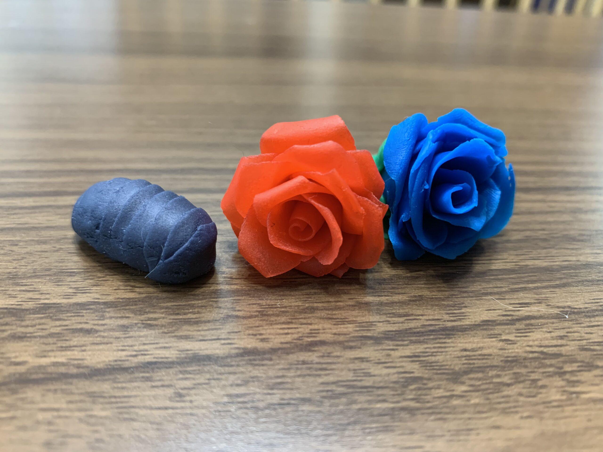 ダンゴムシとバラ